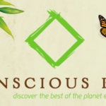 3-month Conscious Box subscription Giveaway