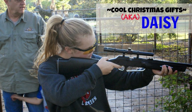 Looking for cool Christmas gifts? Daisy's got you covered. {$100 Academy Giveaway}