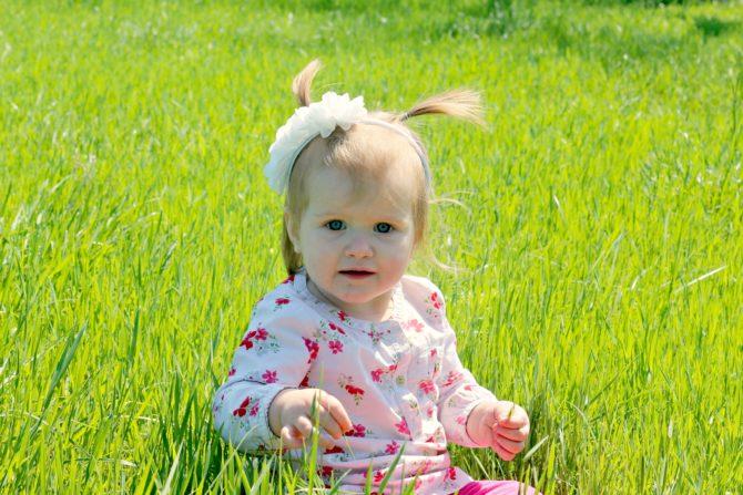 ryan grass