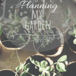 Is it too early to plan my Spring Garden?