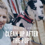 Spring Cleaning |Cleaning up after the pup!