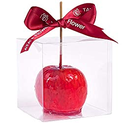 Fun Candy Apples! Perfect for Fall.